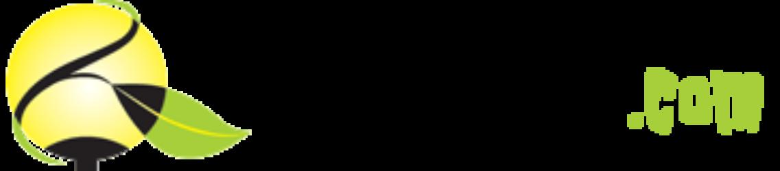 Hagelys